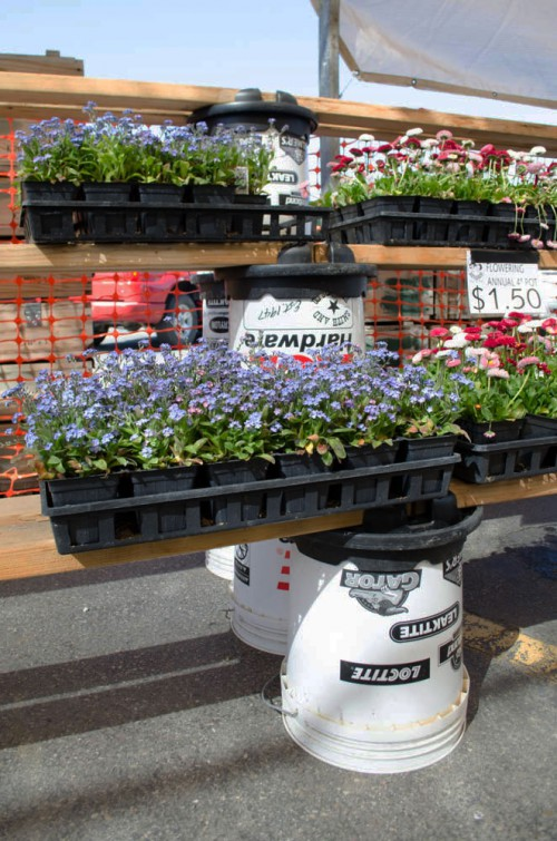Forget-Me-Knots stacked on Handy Bucket Builders at Smith and Edwards