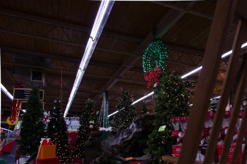 Trees, gifts, and Christmas decor await you at Smith and Edwards!