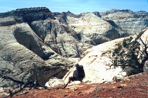 Capitol Reef, Utah - Mike Vause, Smith and Edwards
