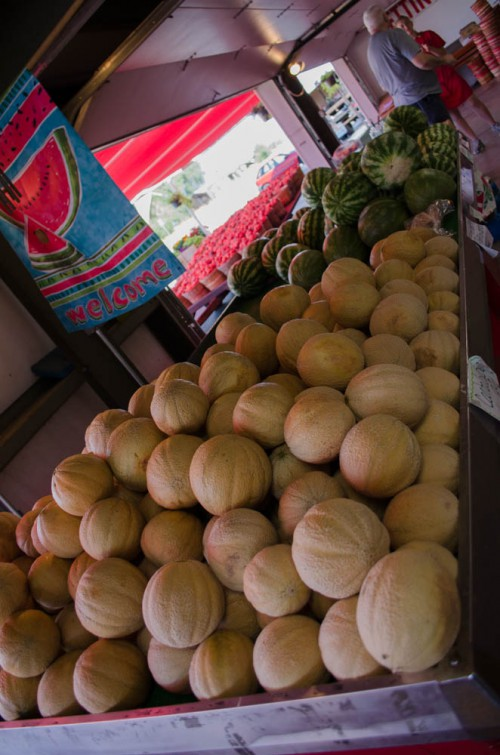 Cantaloupe and Watermelon at Pettingill's