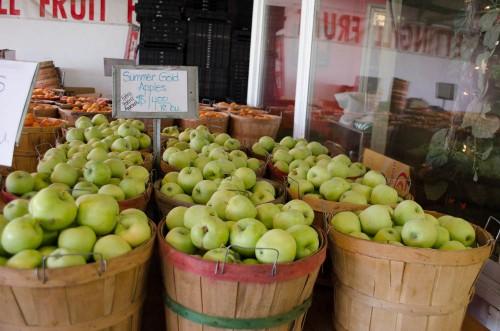 Summer Gold Apples at Pettingill's