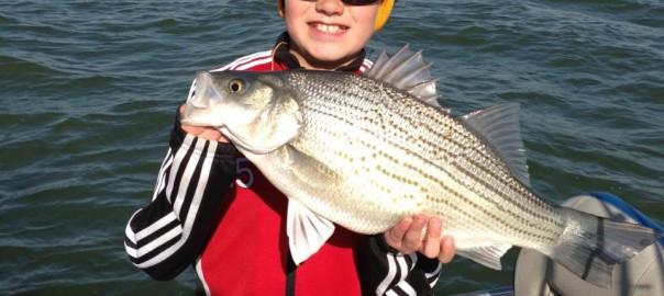 Willard Bay Fishing Report - May 1 - Smith and Edwards Blog