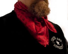Brands Silk Scarf wild rag