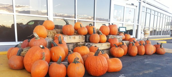 Pumpkins and Ammo Boxes