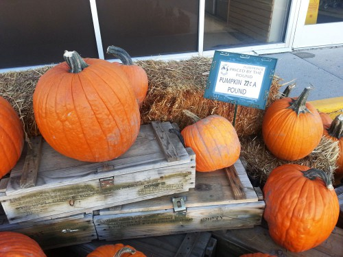 Pumpkins just 22 cents a pound at Smith & Edwards this October 2014