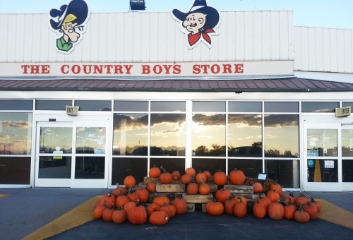 Pumpkins at the Country Boy Store, Smith & Edwards