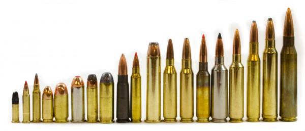 Calibers to shoot at Range Day
