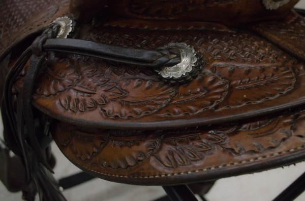 Shiny conchos and leather on your freshly-cleaned saddle!