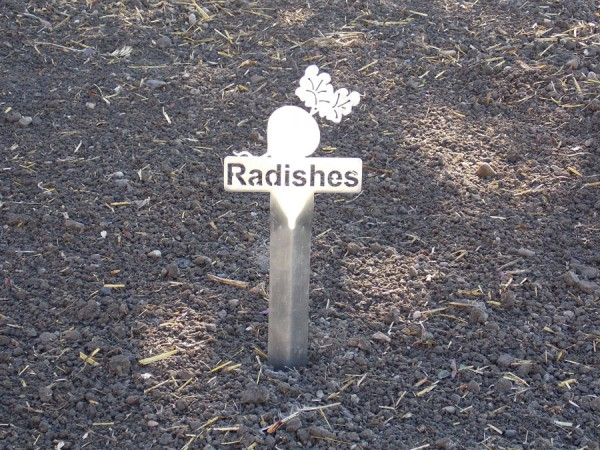 Radishes metal garden marker from Burnett at Smith & Edwards
