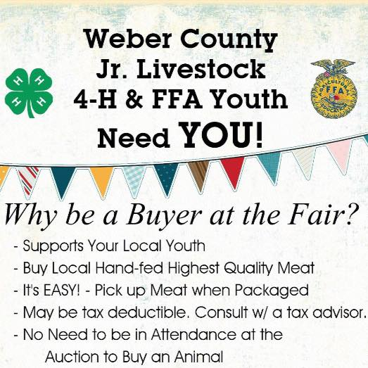 Weber County Junior Livestoc 4-H and FFA Youth need YOU!