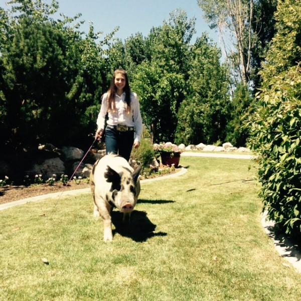 Kennedy Douglas walking her hog