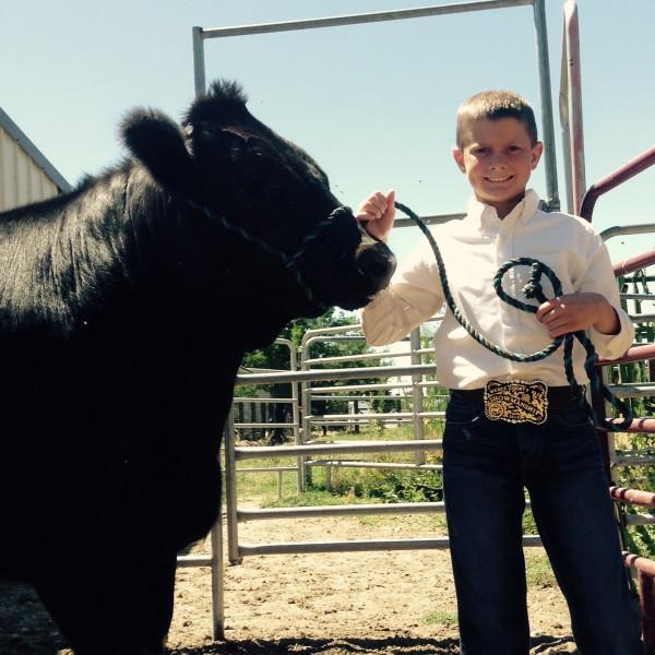 Gavin Douglas and his steer