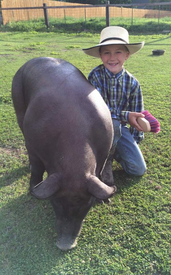 Pace Thompson grooming his hog