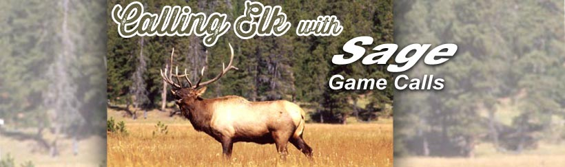 Calling Elk with Sage Game Calls