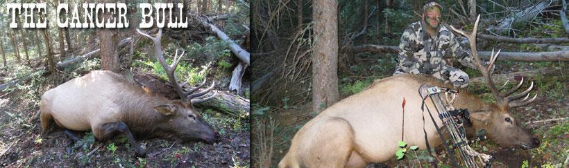 Tom Hooker and his bull elk