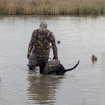 Nothing beats a day spent duck hunting with your dog