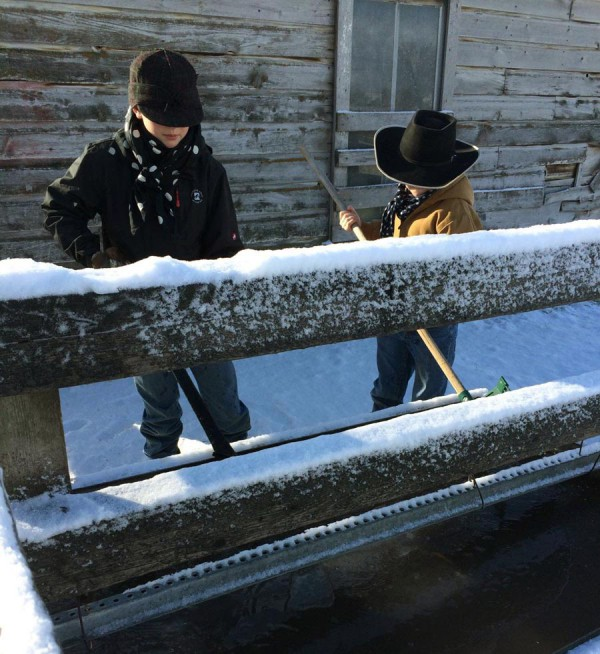 Breaking ice in the trough - Wells is wearing a Stormy Kromer hat, and both boys are staying warm with wild rags!