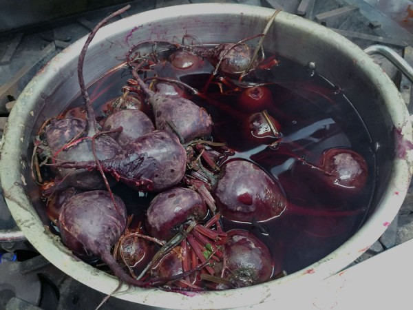 Boiling the beets with their stems & tails on will keep the rich purple-red color from bleeding out!