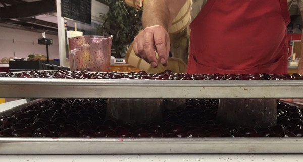 freezing-cherries-in-layers