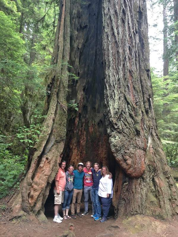 Lauren's family in the Redwoods