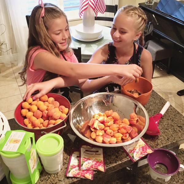 Dehydrating Apricots: Pitting