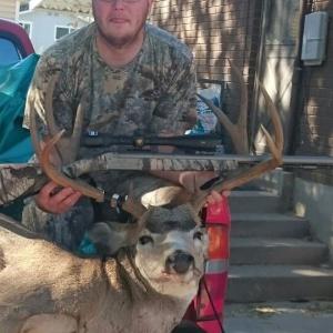 Kevin's Deer