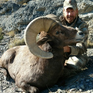 Randy Grange's Big Horn Sheep